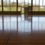 DanishSchools-GymView